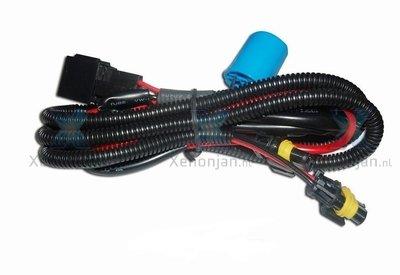 Kabelboom bi-xenon 9004 HB1