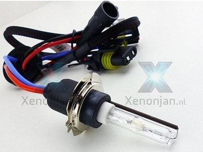 H7 xenon lamp met metalen voet